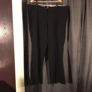 NWOT TORRID 22T BOOTCUT DRESS PANT